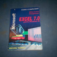 EXCEL 7.0 PENTRU WINDOWS 95 - Carte sisteme operare