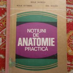 NOTIUNI DE ANATOMIE PRACTICA - Nicolae Diaconescu