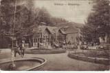 #1620- Romania, Oravicza c.p. circ. 1917: Banyavolgy, Gradina de vara, animat, Circulata, Fotografie, Oravita