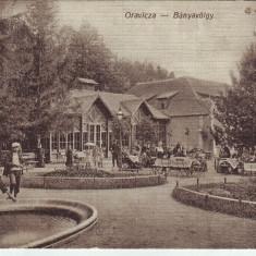 Romania, Oravicza carte postala circulata 1917: Banyavolgy, Gradina de vara, animat - Carte Postala Banat 1904-1918, Fotografie, Oravita