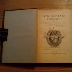 PATKOLASTANI KEZIKONYV - Nadaskay Bela, Schwenszky Armin - Budapest, 1908, 259p