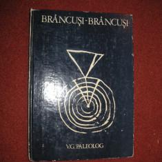 Brancusi - Brancusi - V. G. Paleolog - Carte sculptura