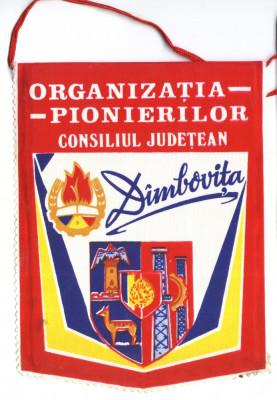 FANION PIONIERI ORGANIZATIA PIONIERILOR CONSILIUL JUDETEAN DAMBOVITA foto