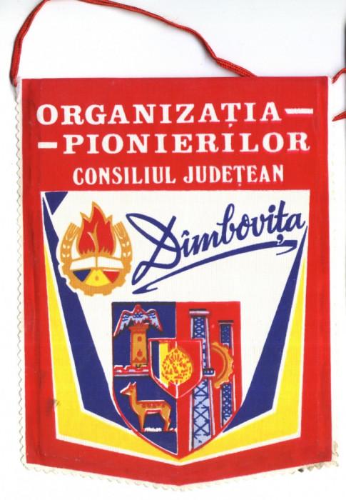 FANION PIONIERI ORGANIZATIA PIONIERILOR CONSILIUL JUDETEAN DAMBOVITA foto mare