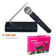 Microfon wireless profesional