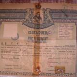 Diploma de bacalaureat - Diploma/Certificat