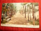 Ilustrata -Lacul Sarat -Parcul- Salutari din Braila ,circ. 1907 Ed.Munchen