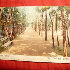 Ilustrata -Lacul Sarat -Parcul- Salutari din Braila, circ. 1907 Ed.Munchen - Carte Postala Muntenia 1904-1918, Circulata