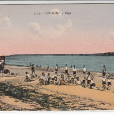 GIURGIU, PLAJA - Carte Postala Muntenia 1904-1918, Necirculata, Printata