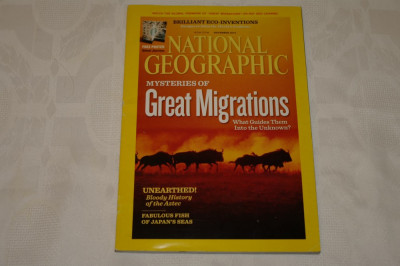 National Geographic - november 2010 - Mysteries of Great Migrations foto