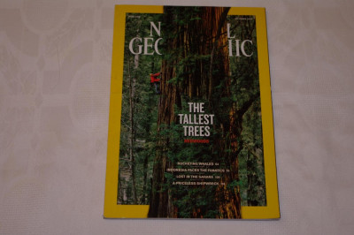 National Geographic - october 2009 - The tallest trees - Redwoods foto