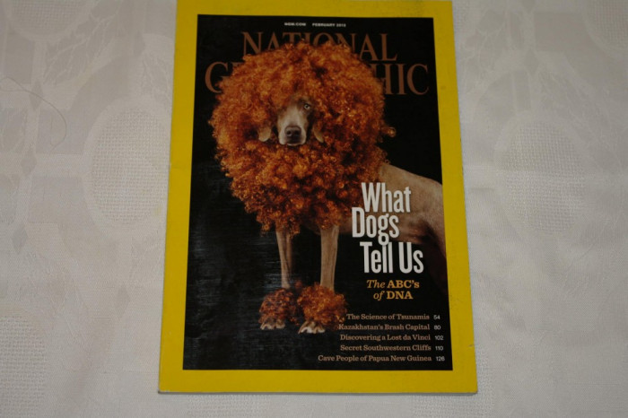 National Geographic - february 2012 - What dogs tell us