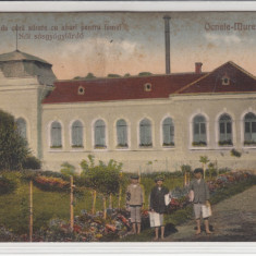 OCNELE MURESULUI BAILE DE VARA SARATE CU ABURI PENTRU FEMEI CIRCULATA 1926 - Carte Postala Transilvania dupa 1918, Printata, Ocna Mures