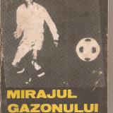 (C5929) MIRAJUL GAZONULUI DE MIRCEA LUCESCU - Carte sport