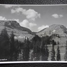 Carte postala - Bucegi - Batrana - Carte Postala Bucovina dupa 1918, Necirculata