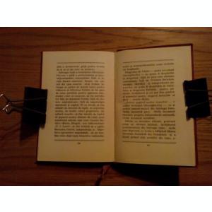 GHEORGHE GHEORGHIU-DEJ * Schita Biografica - 1951, 95 p.