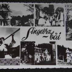 Carte postala - Singeorz Bai - Carte Postala Bucovina dupa 1918, Necirculata