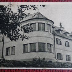 Carte postala - Basna - Bazna - Sanatorul Balnear - Carte Postala Bucovina dupa 1918, Necirculata