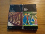 ARTA OCCIDENTULUI *  2 vol. - Henri Focillon - 1974