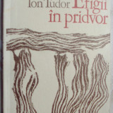 ION TUDOR - EFIGII IN PRIDVOR (POEME) [editia princeps, 1974 / tiraj 460 ex.] - Carte poezie