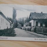 SANGEORZ-BAI - 1931 - NECIRCULATA - Carte postala tematica, Fotografie