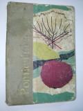 Pomicultura - E. Manughevici.-N. Meza-I. Pasc-D. Prica- 1965