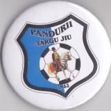 Insigna Pandurii Targu Jiu 1963