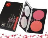 Trusa Profesionala Blush 2 culori Wild Flower #02 paleta fard obraz