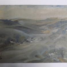 PEISAJ DOBROGEAN de SILVIA VELEA (MEMBRA A U.A.P.R., FILIALA PICTURA BUCURESTI) - Pictor roman