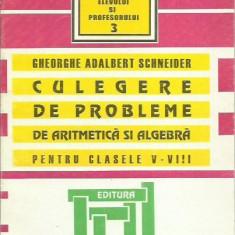 Gheorghe Adalbert Schneider - CULEGERE DE PROBLEME PENTRU CLASELE V - VIII