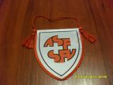 Fanion Fed. de fotbal Elvetia