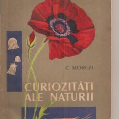 (C5981) CURIOZITATI ALE NATURII DE C. MORUZI - Carte Biologie