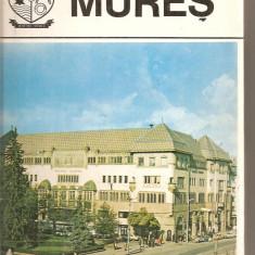 (C5976) JUDETELE PATRIEI - MURES - Carte Monografie