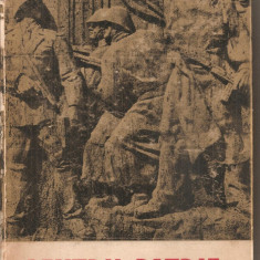 (C5965) PENTRU PATRIE DE col. A. LUPASTEANU, L. TARCO, V. BIRZA - Carte Politica