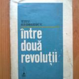 N5 Titu Georgescu - Intre doua revolutii - Istorie
