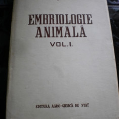 EMBRIOLOGIE ANIMALA VOL. I  G. A. SMIDT