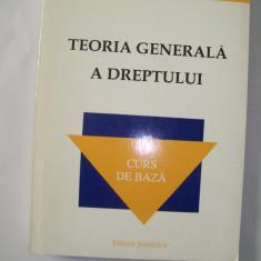 TEORIA GENERALA A DREPTULUI I.DOGARU - Carte Teoria dreptului