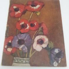LUMINĂ ŞI COLOARE NR. 1/  ANUL I 1946/  OMAGIU LUI ŞTEFAN LUCHIAN /NR. VII