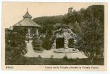 1497 - Arges, PITESTI, grota de la Trivale - old postcard - used - 1917, Circulata, Printata