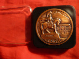 Placheta DEVA jud. Hunedoara , d= 5 cm ,bronz ,in cutie originala