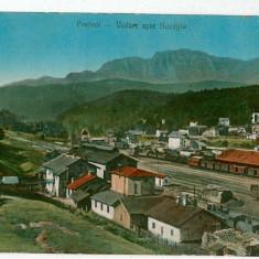 2845 - Brasov, PREDEAL, Railway Station - old postcard - unused - Carte Postala Transilvania 1904-1918, Necirculata, Printata