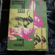 IEPURELE DE CASA CRESTERE SI VALORIFICARE