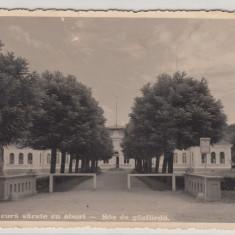 ALBA- UIOARA, BAILE DE CURA SARATE CU ABURI, CIRCULATA JUL.*38 - Carte Postala Transilvania dupa 1918, Fotografie, Alba Iulia