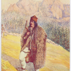 2868 - Bucovina, SUCEAVA, Ethnic, cioban - old postcard - unused - Carte Postala Bucovina 1904-1918, Necirculata, Printata