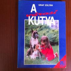 A varosi kutya graf zoltan carte hobby in limba maghiara ilustrata caini de oras