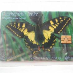 Cartela telefon Ungaria - plastic-6443/0