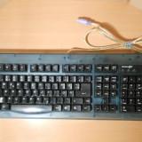 Tastatura Innov@t pe PS2 German, Standard, Cu fir