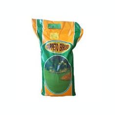 Seminte gazon - Gazon natural