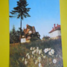 HOPCT 15593 PREDEAL -VILE LA PREDEAL -JUDETUL BRASOV [CIRCULATA] - Carte Postala Transilvania dupa 1918, Printata