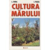 Lenuta Chira, I. Pasca - Cultura marului